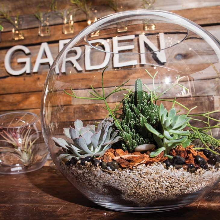 Garden in a Globe