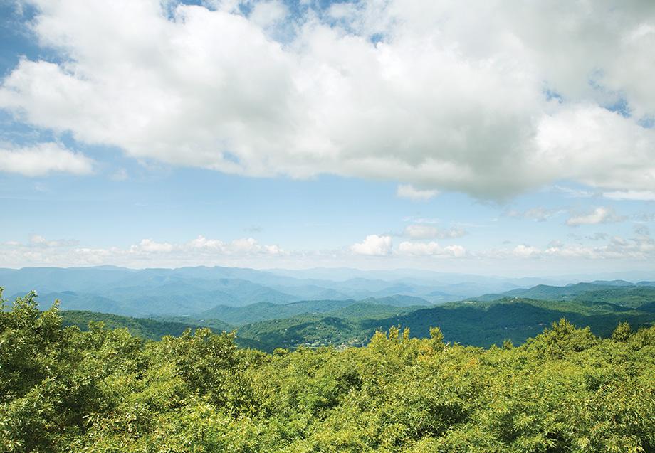 12 Great Georgia Hikes - Atlanta Magazine