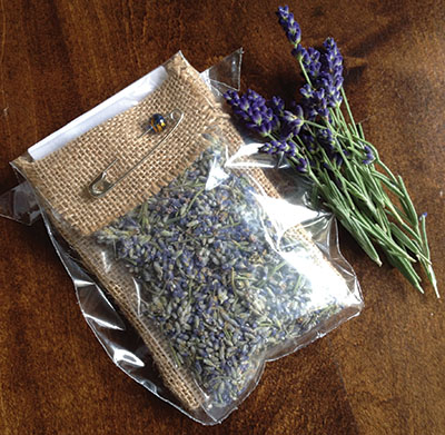 Photograph courtesy of White Hills Lavender and Herb Farm