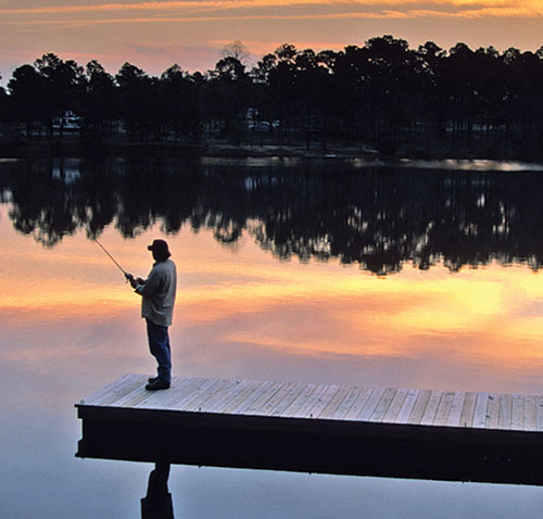 Photograph courtesy of Georgia State Parks