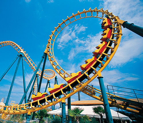Photograph courtesy of Wild Adventures Theme Park