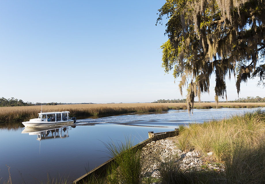 Things To Do Near St Simons Island