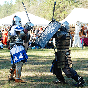 Hoggetown-Medieval-Faire-Image-for-VF-Email