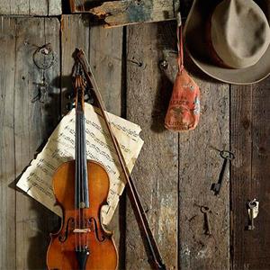 Golden Isles Bluegrass Festival Travel Enews