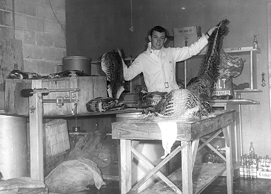 Chris Plott in the 1960s, before gator skins became contraband in Georgia.