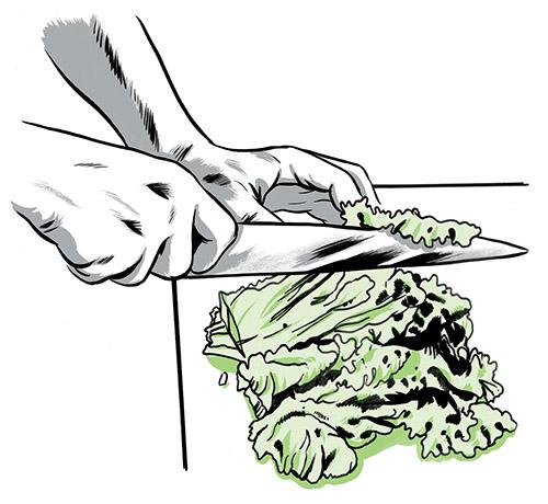 0515_technique_salad_01_jkimmel_oneuseonly