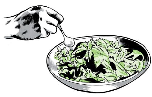 0515_technique_salad_04_jkimmel_oneuseonly