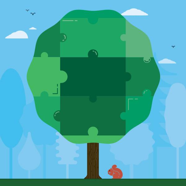 Tree ordinances