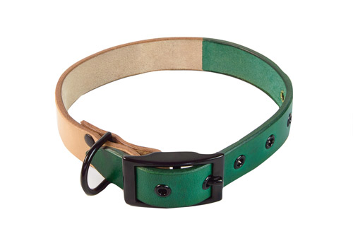 Cord Shoes dog collar