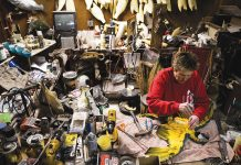 Feather, Fin, and Fur Taxidermy Studio