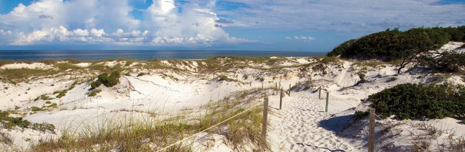 Cape San Blas, Florida