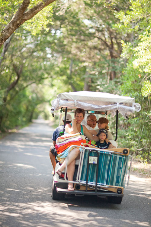 Golf cart through a maritime forest.