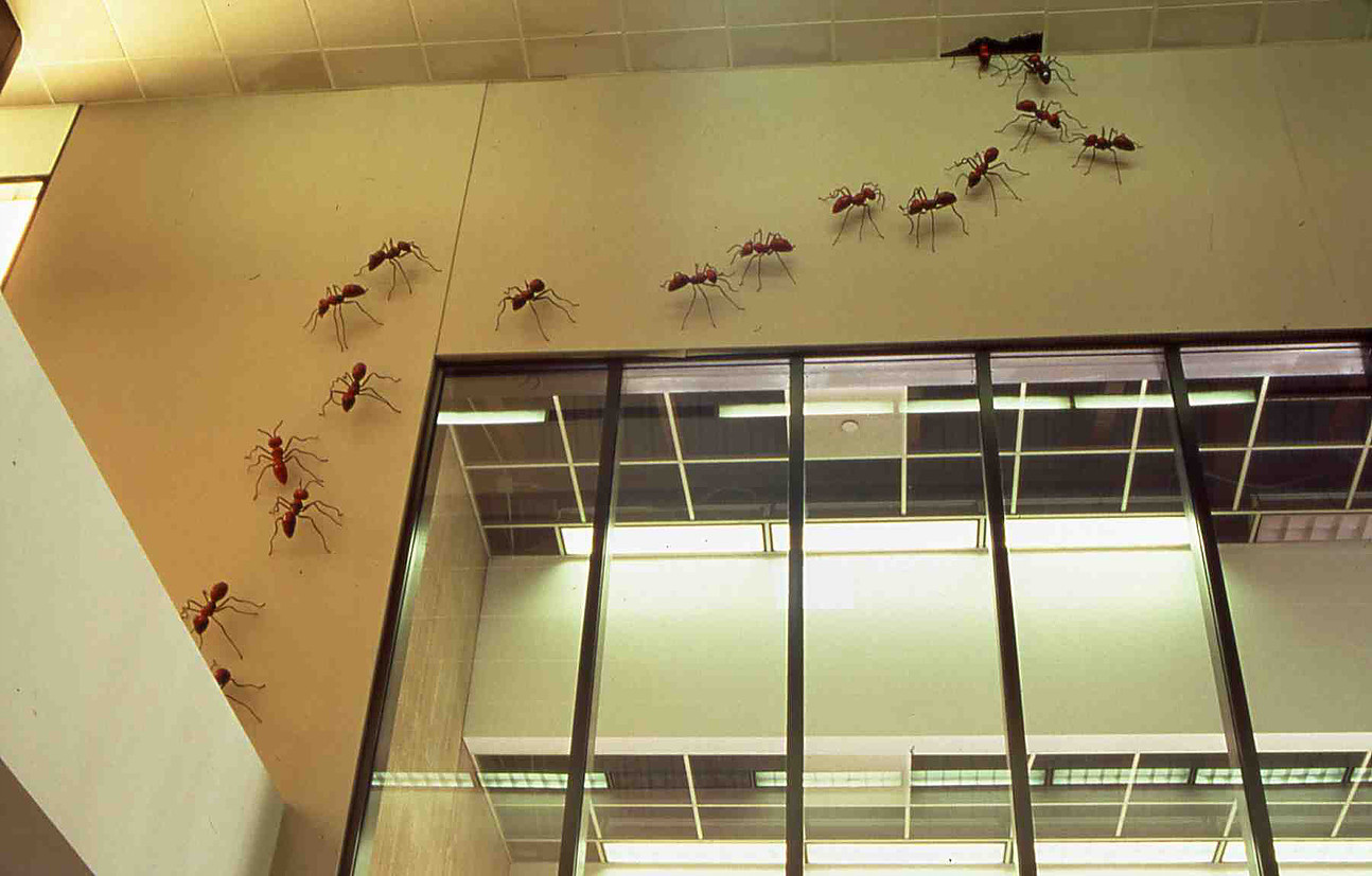 Farewell Beautiful Bizarre Atlanta Airport Ceiling Ants Atlanta
