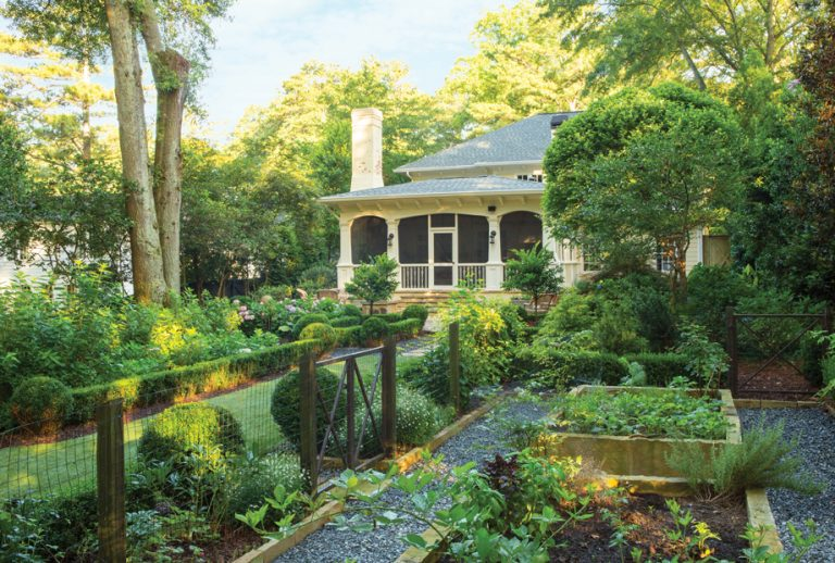 This transformed Peachtree Park backyard is the envy of the neighbors