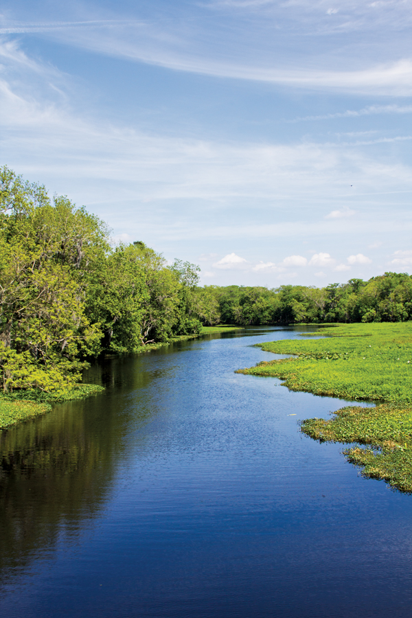 Some of the river's waterways are narrow and deceptively shallow.