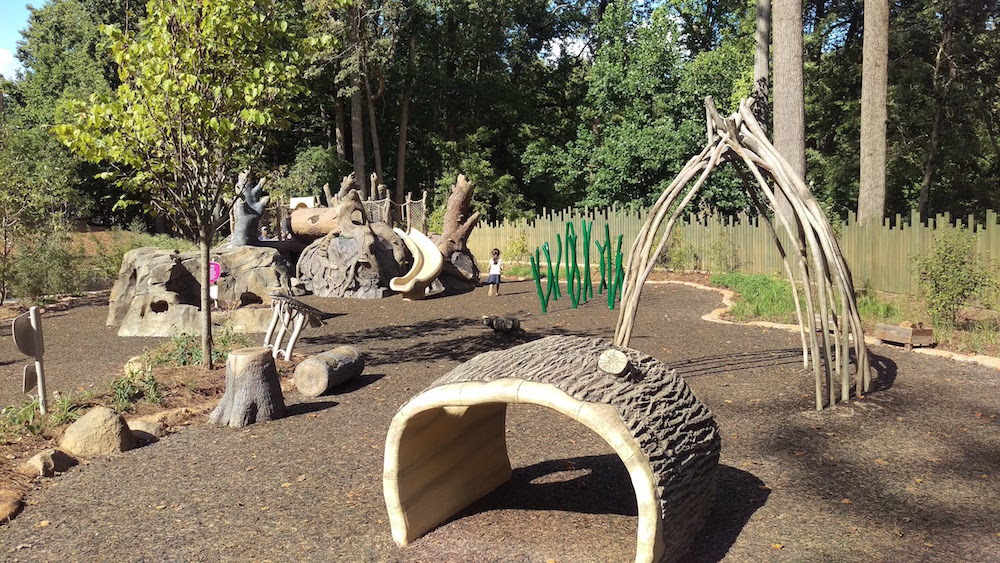 The Nature Stories area