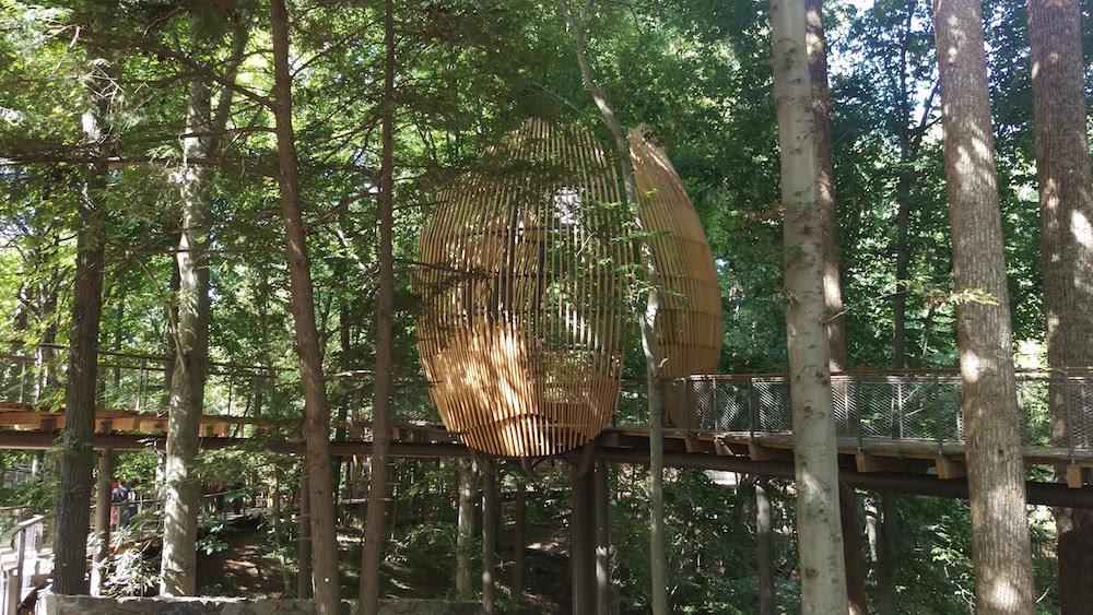 The Petal Tree Pod