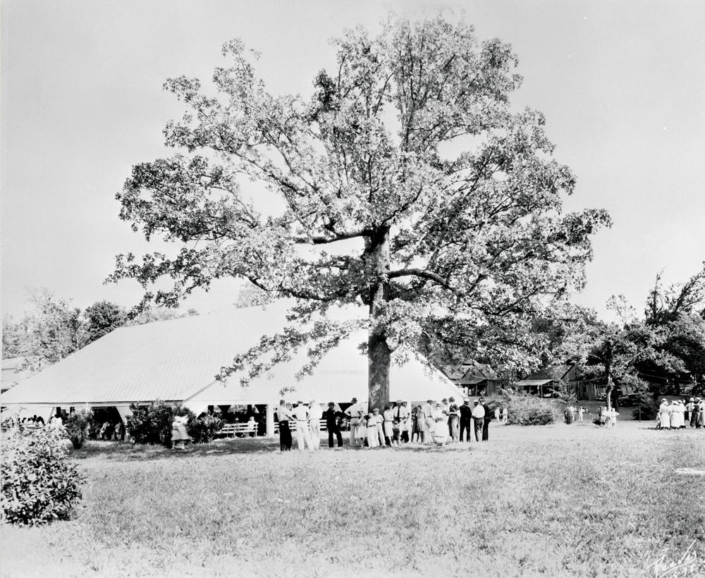 Salem Campmeeting, 1931
