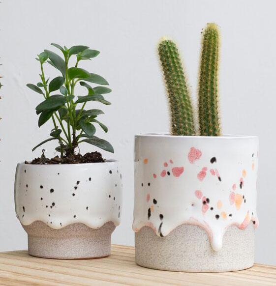 planter_courtesy