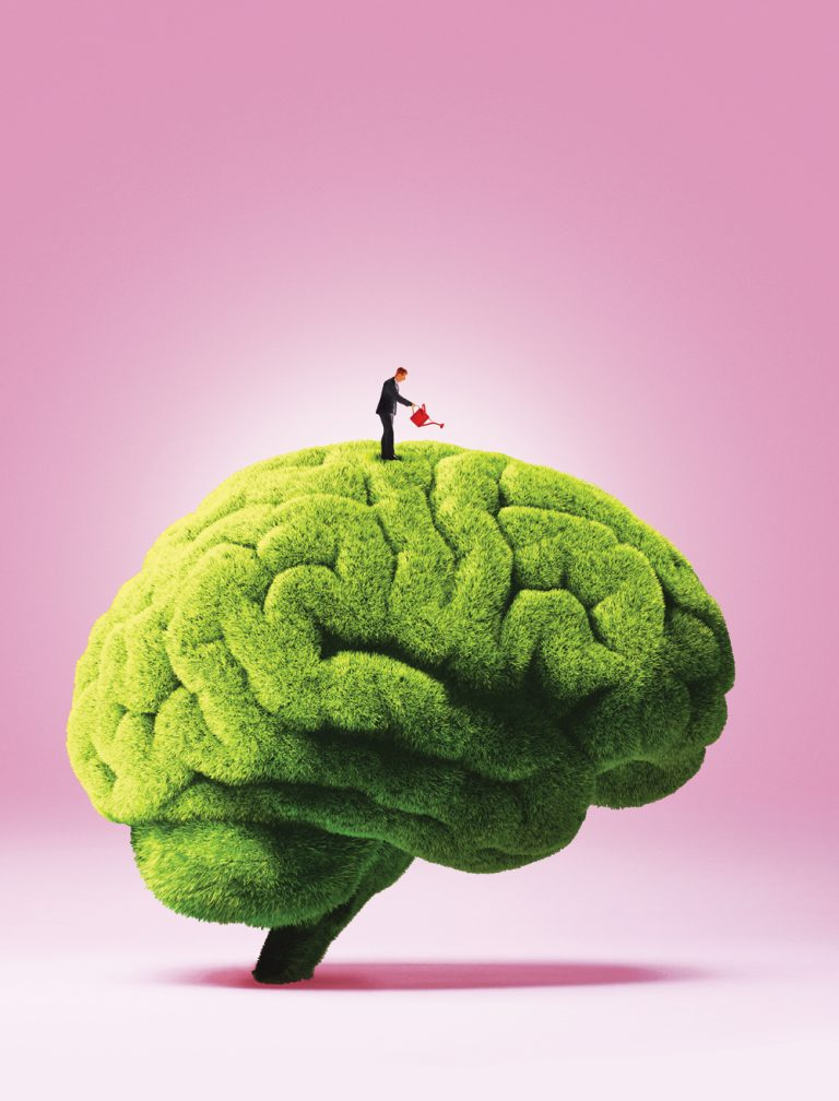 Can you make yourself smarter? We asked one of the world's leading intelligence researchers.