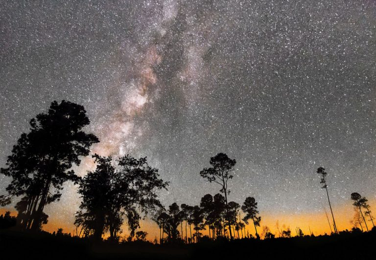 The Milky Way is on display at Stephen C. Foster State Park