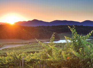 Biltmore Winery, Asheville, North Carolina