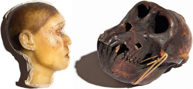 Get your Halloween on with these creepy antiques at Freeman and Fugate Oddities