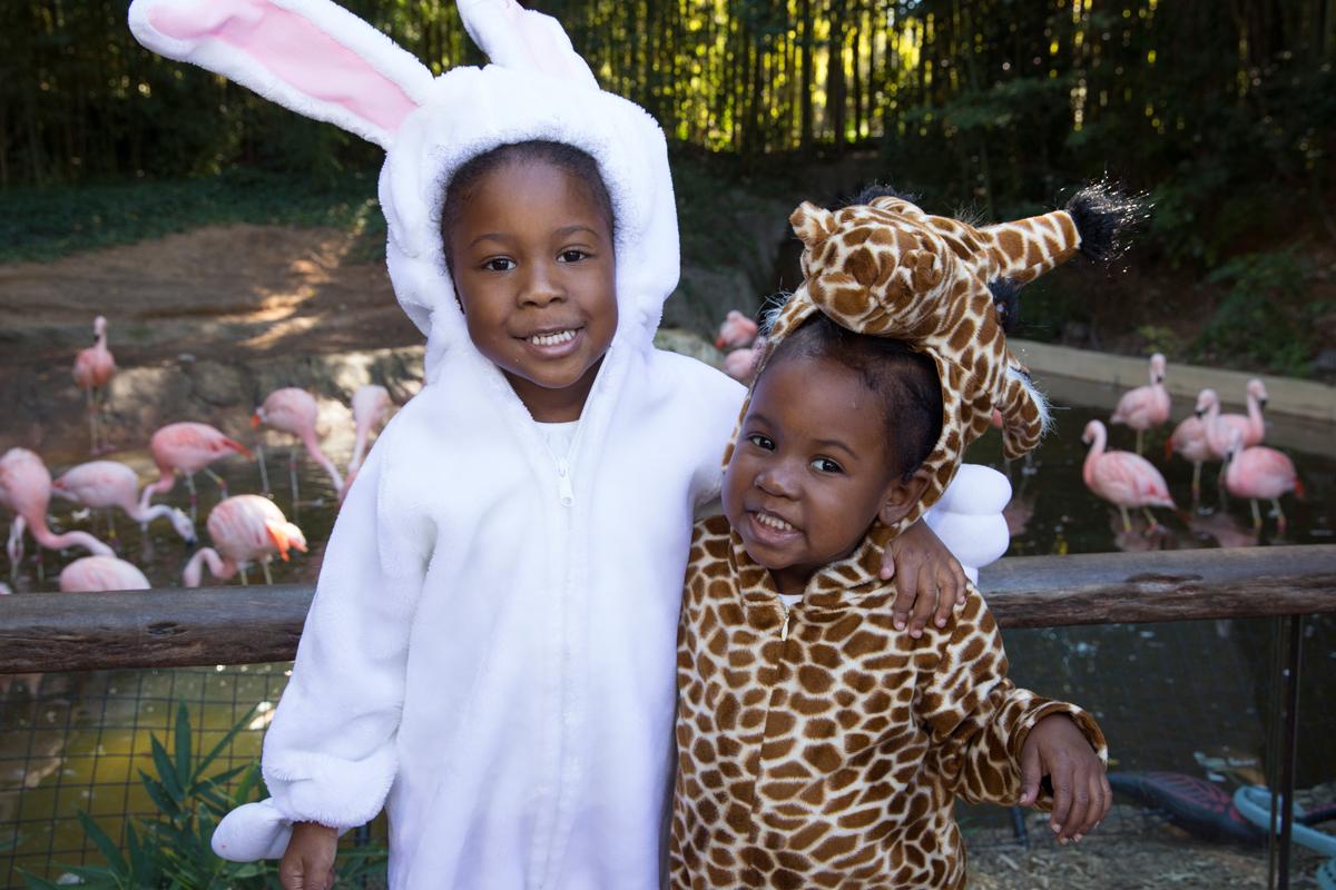 Things to do Halloween events Atlanta