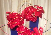 Atlanta Botanical Garden Flower Show