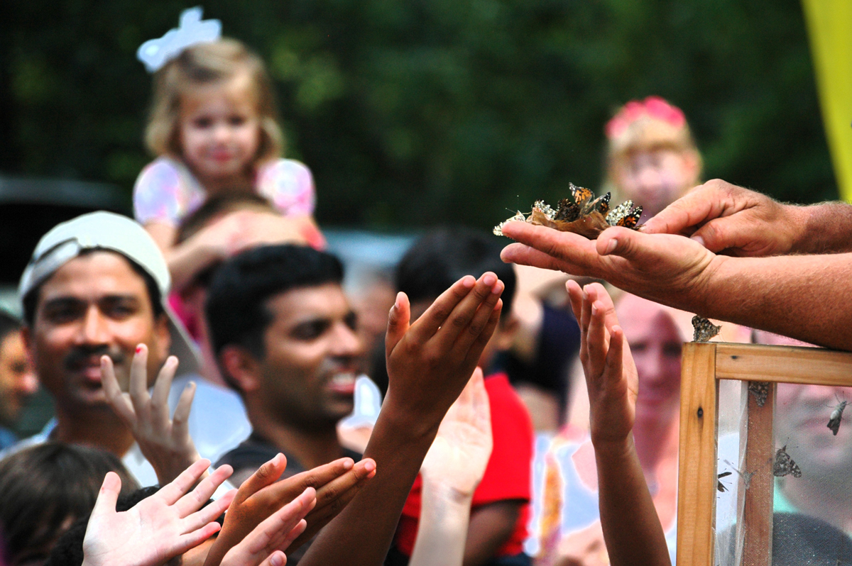 19th Annual Flying Colors Butterfly Festival