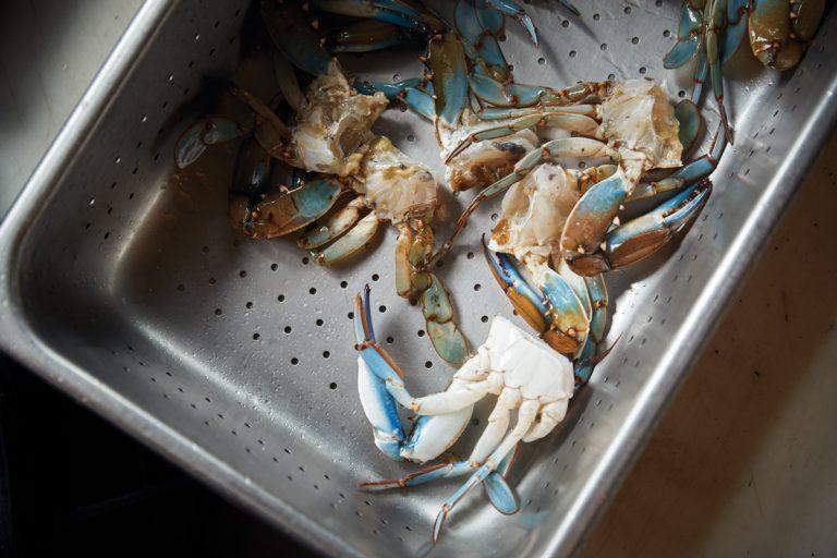 Where to eat local seafood on Georgia's coast