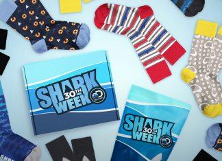 Shark Week Sock Fancy