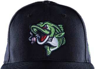 Minor League Ballparks Gwinnett Stripers