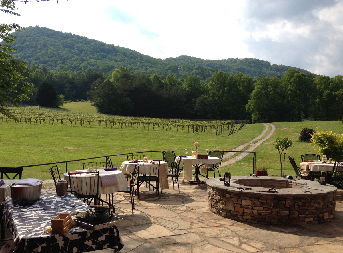 Perfect Day Trips From Atlanta Tiger Mountain Vinyards