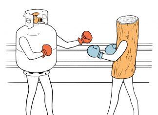 Barbecue propane vs wood