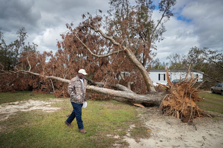 Georgia pecan farmers have thrived for a century. After Hurricane Michael, they're unsure if they'll survive another generation.
