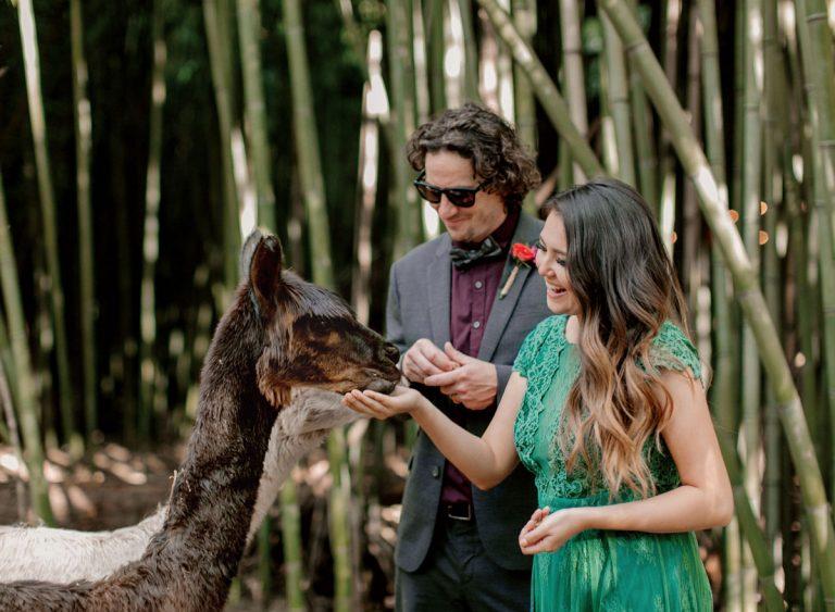 Atlanta's Sweet Grass Weddings specializes in a growing trend: tiny weddings