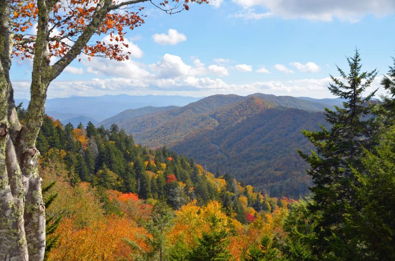 Savor the views on a road trip through eastern Tennessee and western North Carolina