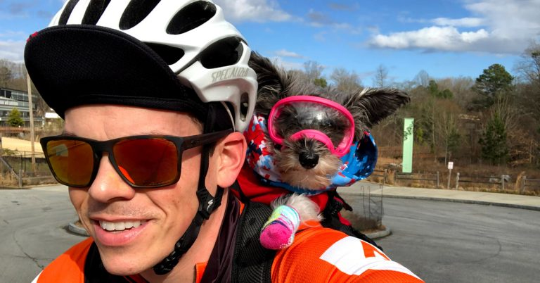 Make way for Pippa, the rescue schnoodle capturing hearts while biking the BeltLine