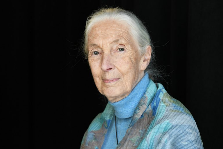 "Jane Goodall on climate strikes: ""I just want them to march and to raise awareness and to act."""