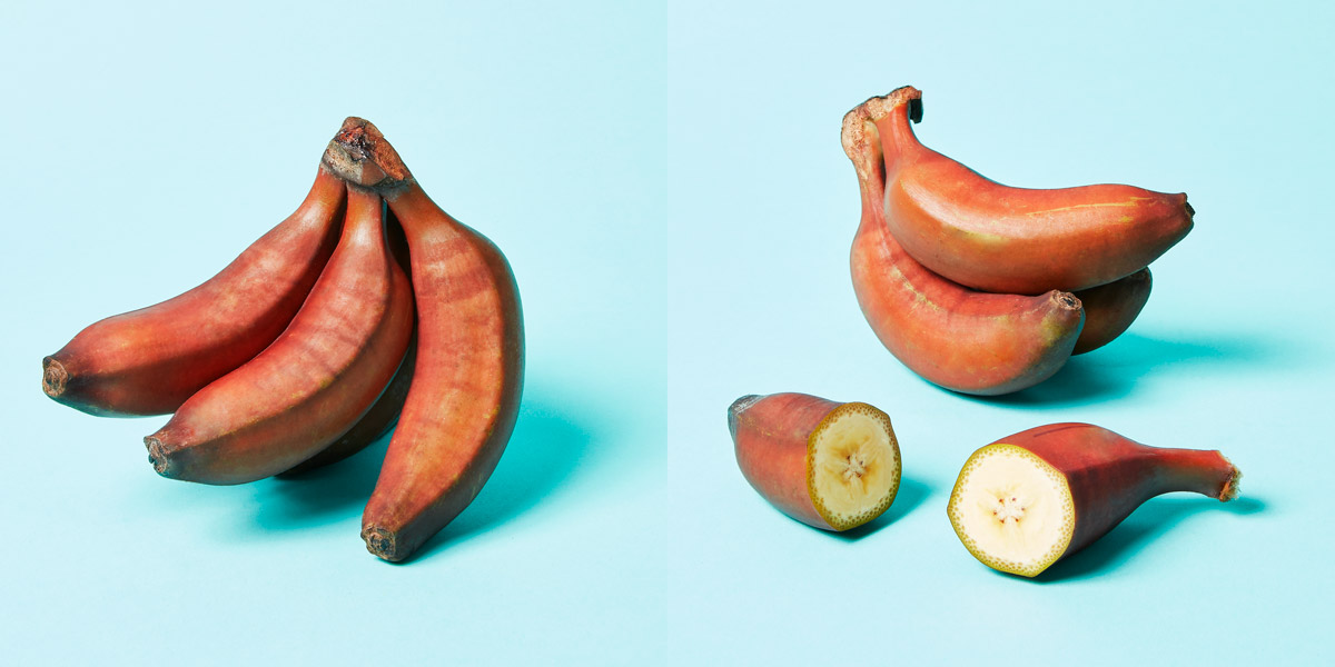 Red Bananas opened and closed
