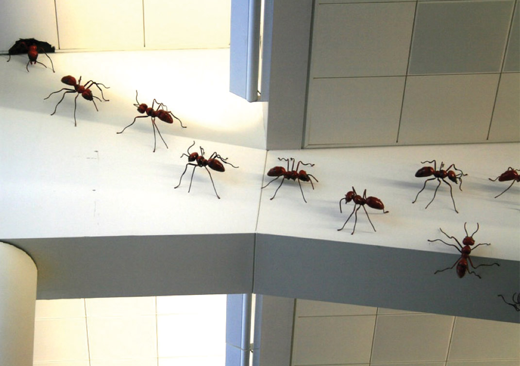 Giant ants crawling on the ceiling at Hartsfield-Jackson Atlanta International Airport