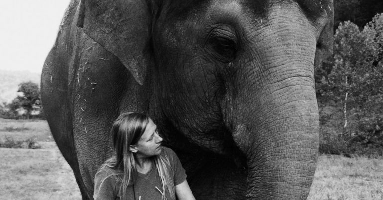 In her battle to be reunited with the elephant she raised, Carol Buckley built a world-class sanctuary in South Georgia
