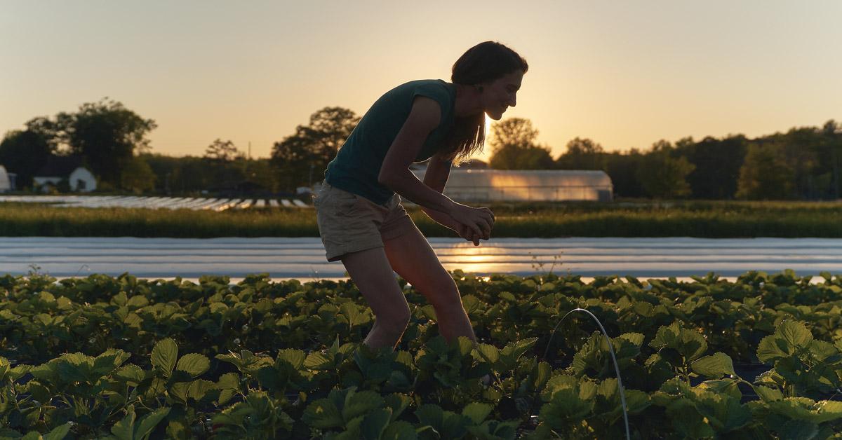 Farming Atlanta COVID-19