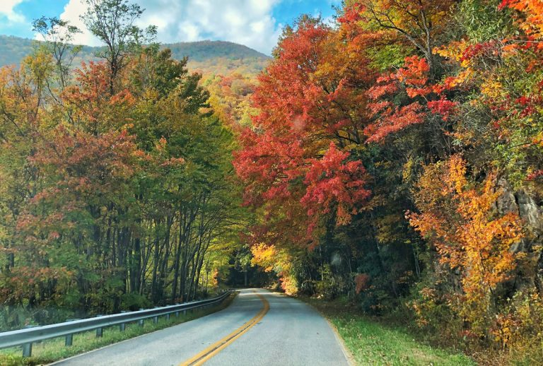 3 scenic drives to take this fall in the North Georgia mountains