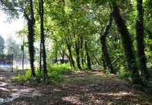 Atlanta BeltLine Westside Trail Extension