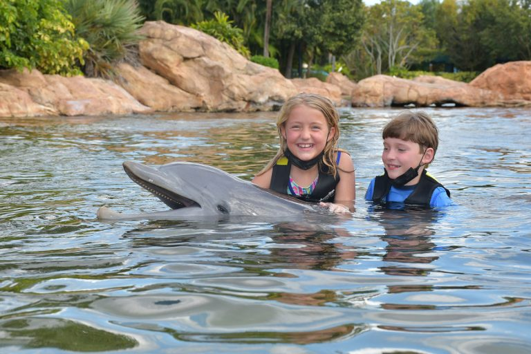 5 things I learned at Discovery Cove