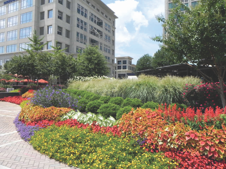 27 facts to know about the community of Buckhead