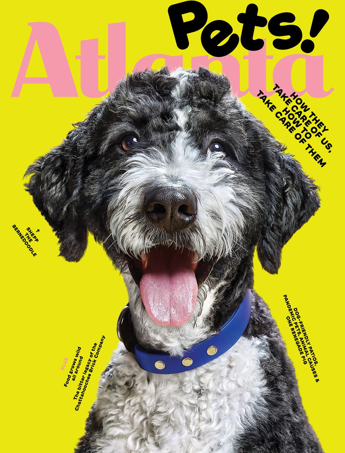 Atlanta Magazine August 2021 cover - pets